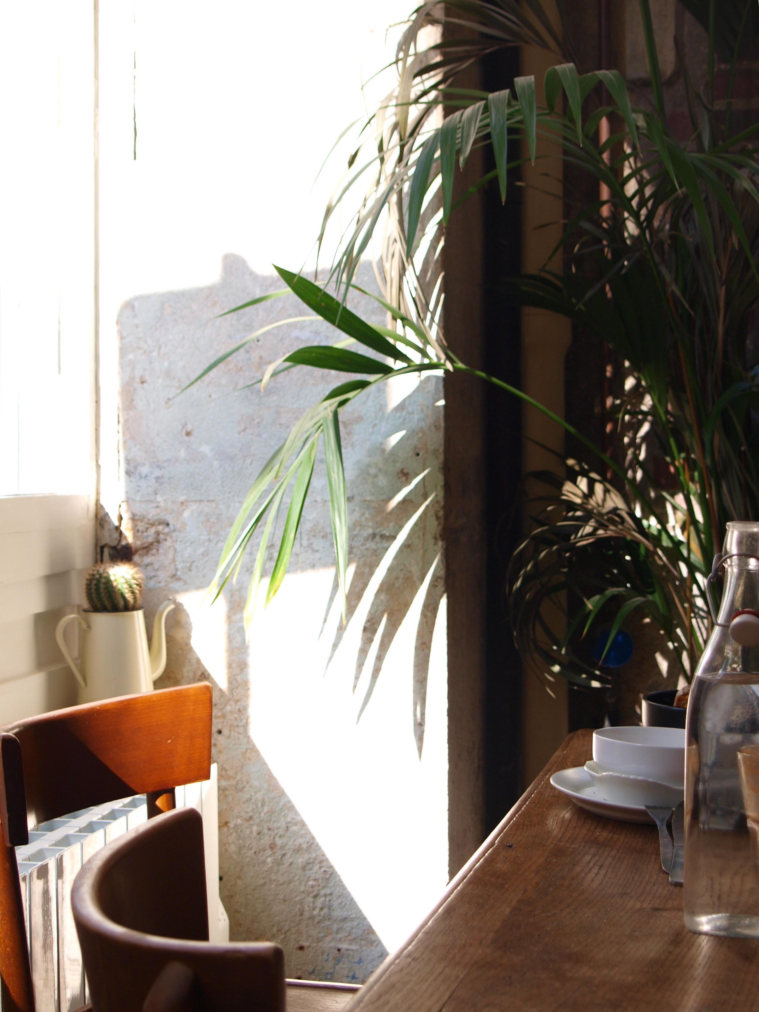 Passager café coffeshop paris 11 bastille